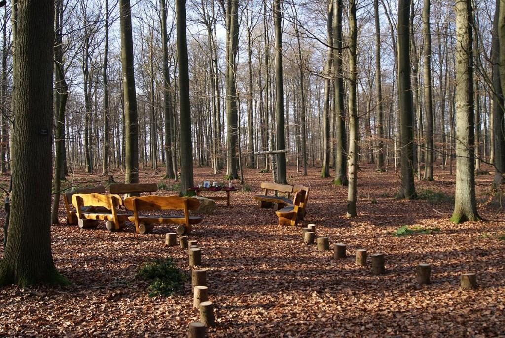 Andachtsplatz 1 im Ruhewald am Fürstengrab zwischen den Bäumen 19 und 21